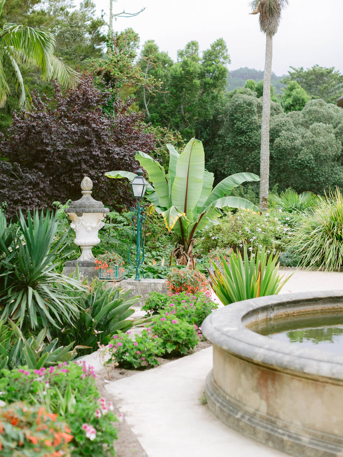 Monserrate Palace garden an exclusive wedding venue in Sintra by Portugal Wedding Photographer