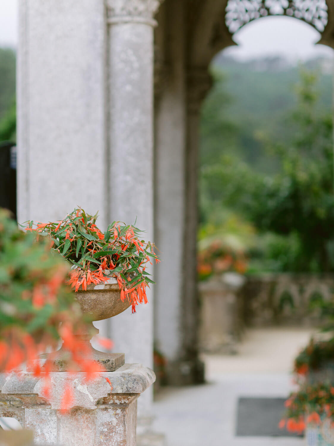 Monserrate Palace Wedding venue in Sintra outdoor detail by Portugal Wedding Photographer