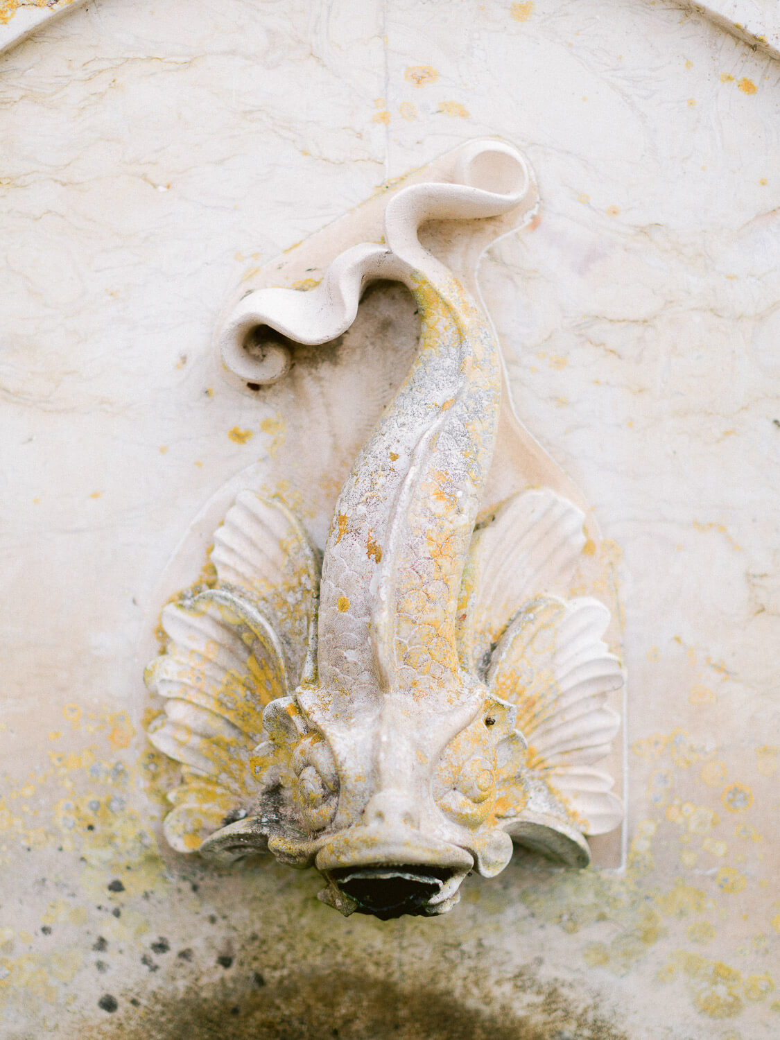 fountain's stone fish ornament detail by Portugal Wedding Photographer