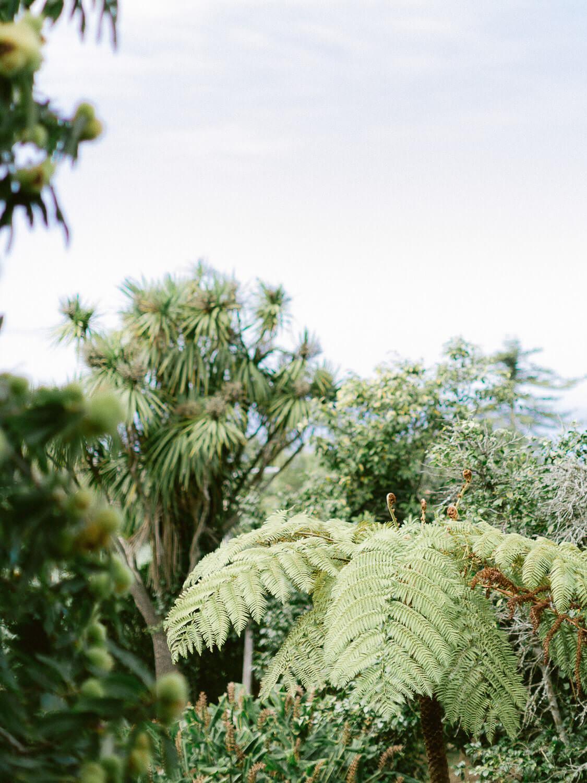 fantastic botanicals at My Vintage Wedding