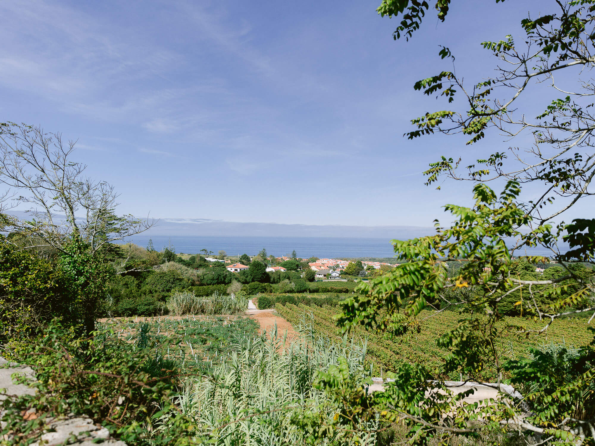 countryside and ocean view from a Sintra wedding venue by Portugal Wedding Photographer
