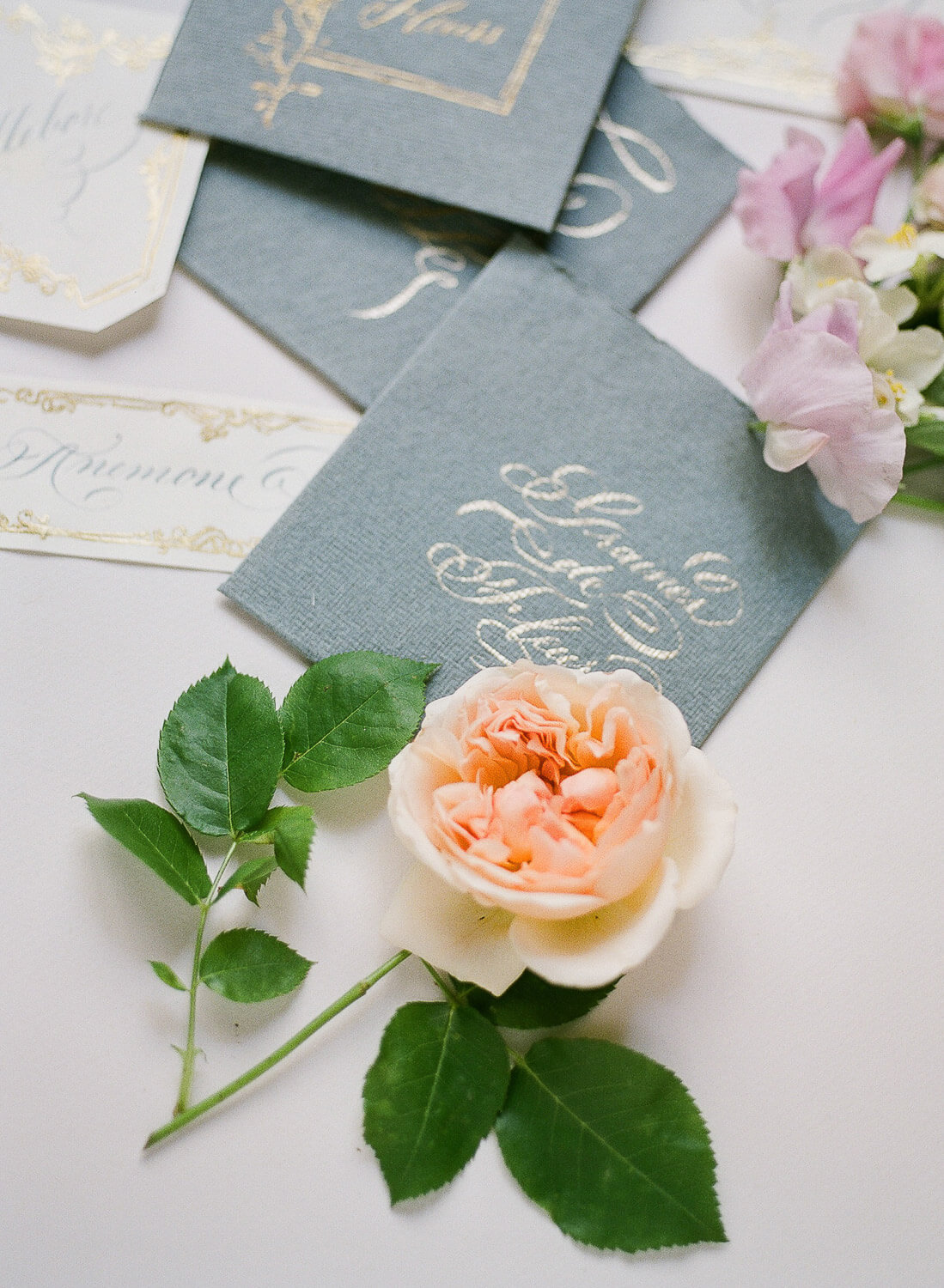 Wedding calligraphy invitations and David Austin rose by Portugal Wedding Photographer